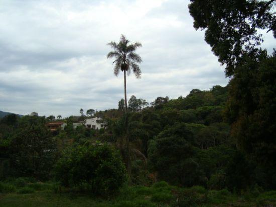 Terreno venda Terra Preta Mairiporã